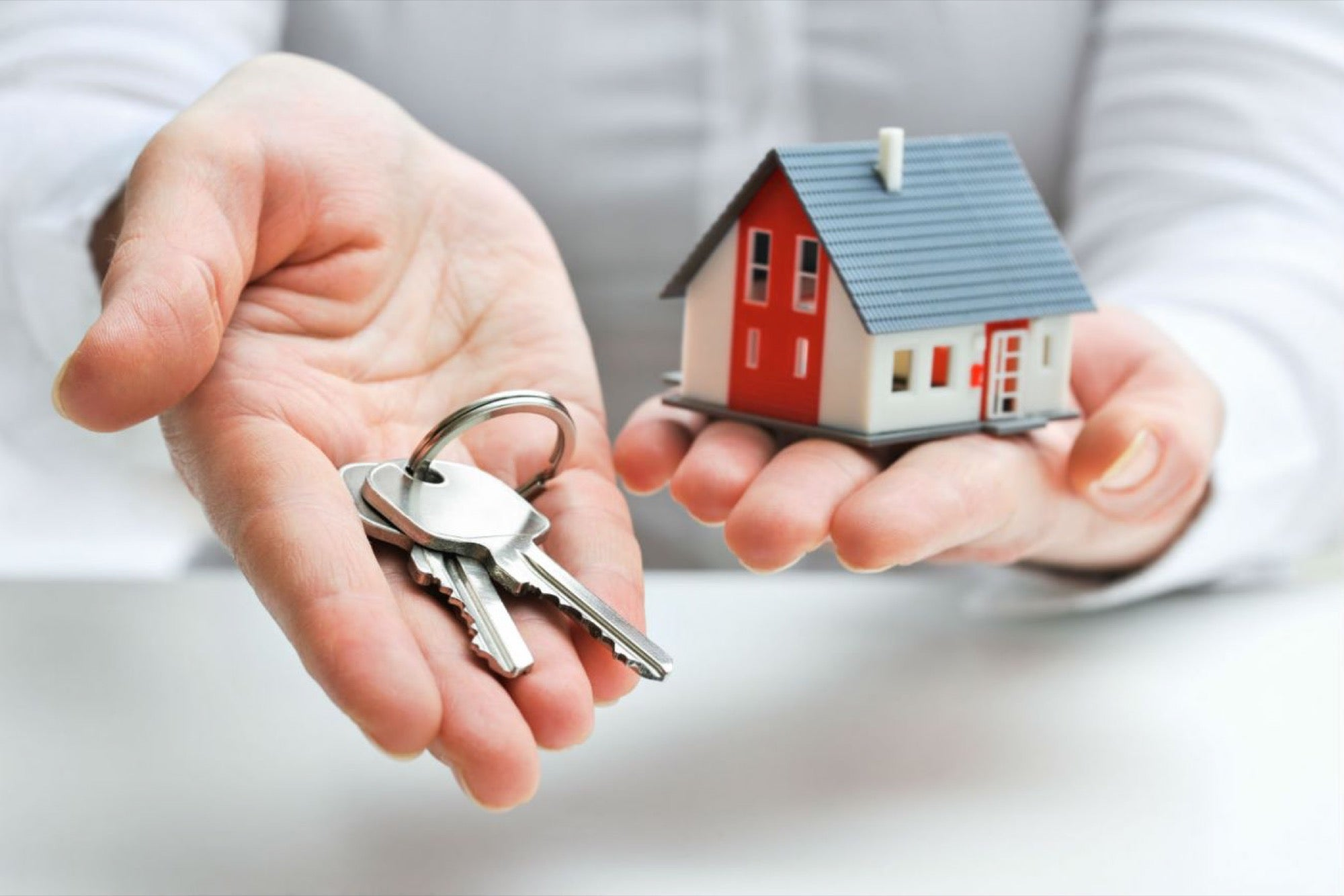 alquilar viviendas dnp